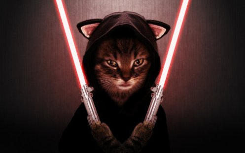 cat-sith-lord